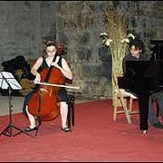 violoncel.jpg